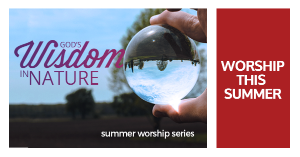 Our current worship schedule